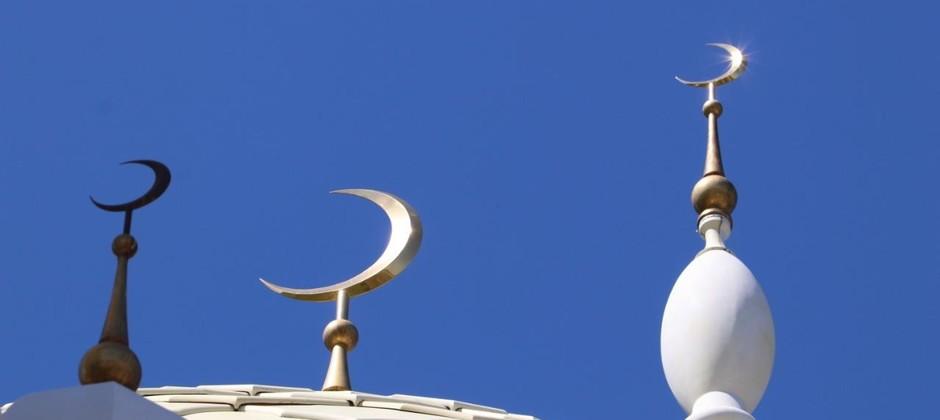 Рекомендации преподавателя Болгарской исламской академии Сайф Али Аль-Асри по случаю наступления 'Ид аль-Адха